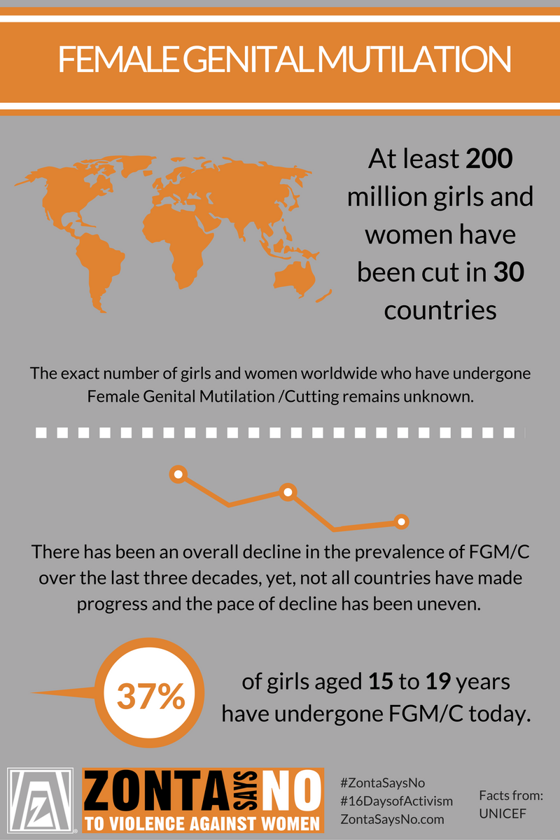 theories on female genital mutilation Female genital mutilation/cutting: a statistical overview and exploration of the dynamics of change new york, unicef, 2013 demographic perspectives on female genital mutilation.